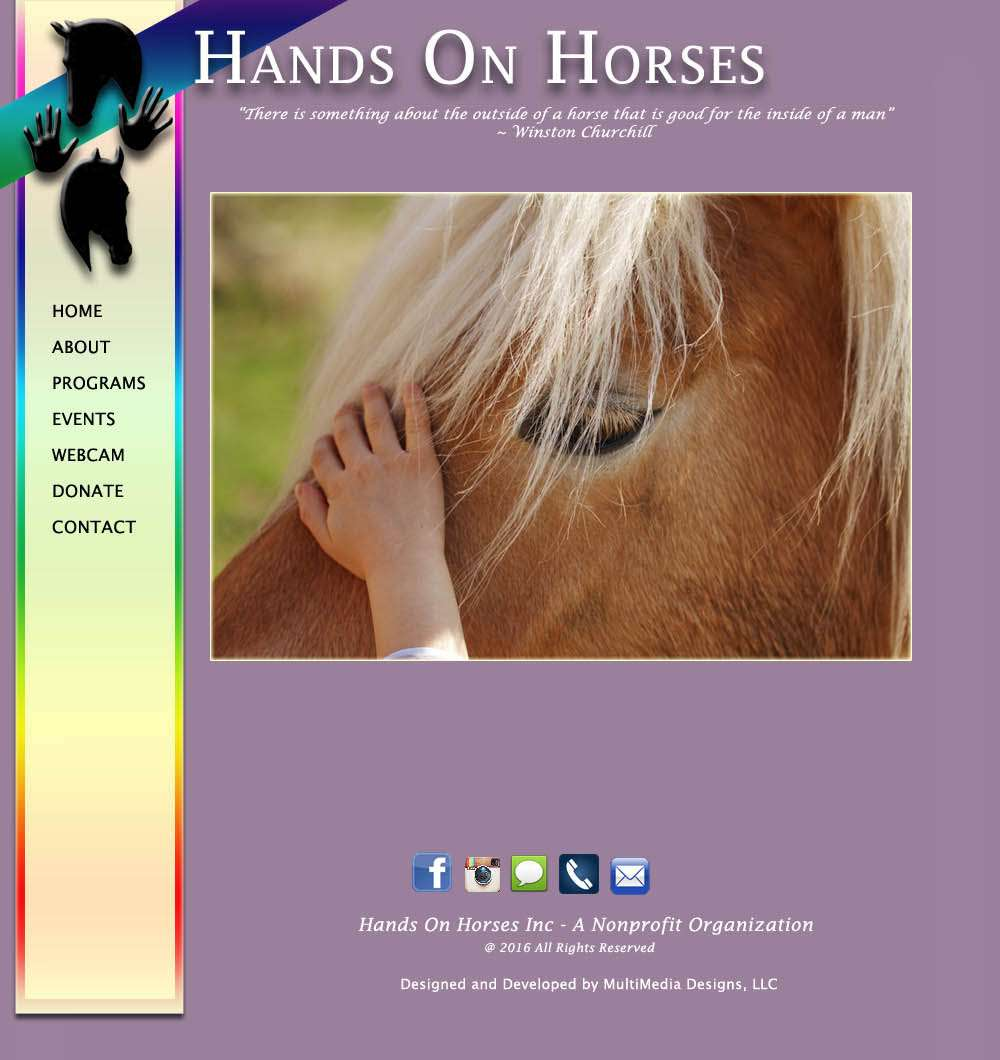 Hands On Horses